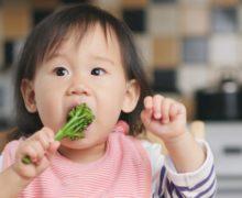 Diversification alimentaire: quels aliments privilégier et lesquels éviter ?